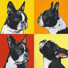 """Fantastic """"French bulldog dogs"""" info is readily available on our website."""