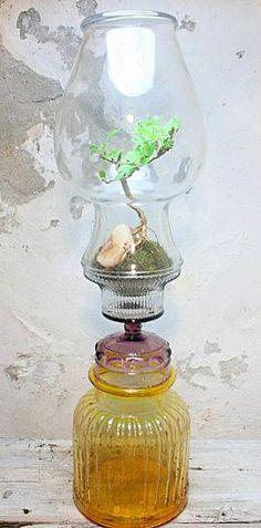 I love the idea of an oil lamp repurposed into a terrarium.