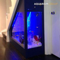 custom aquarium built into under stairs space