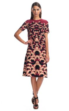 Thakoon Floral Pintucked Dress