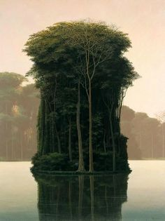The paintings by Cuba painter Tomas Sanchez