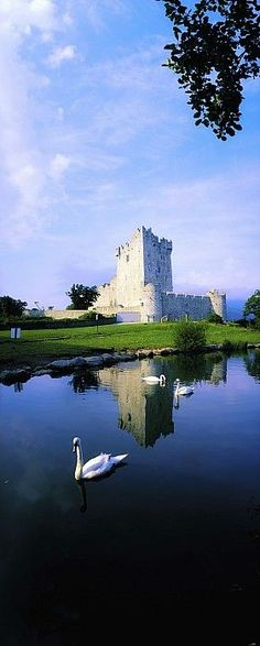 Ross Castle, Killarney National Park, County Kerry, Ireland. Built in the late 15th Century