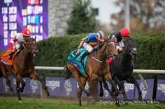 Found(2012)(Filly) Galileo- Red Evie By Intikhab. 3x4 To Northern Dancer, 4x5 To Mr Prospector, 5x5 To Hail To Reason. 21 Starts 6 Wins 11 Seconds 3 Thirds. $10M+ Est. Won 2015 BC Turf At 1 1/2 Miles As The 4th Choice At Odds Of 6-1. Jockey Ryan Moore- Trainer Aidan O'Brien- Owner Michael Tabor, Derrick Smith & Mrs John Magnier.