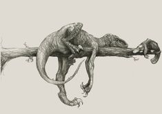 dinosaur art A Raptor and a Platypus Dinosaur Drawing, Dinosaur Art, Raptor Dinosaur, Jurassic Park World, Jurassic Park Tattoo, Extinct Animals, Platypus, Prehistoric Creatures, Creature Design