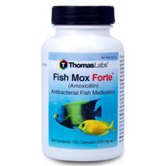 Fish Mox Forte - Amoxicillin - 500mg (100 Count). No prescription required.
