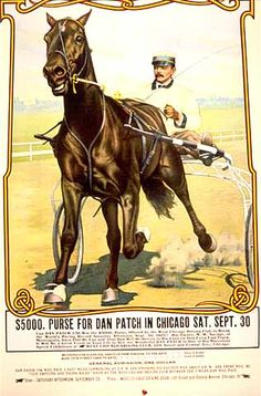 Dan Patch race poster Race Horses, Horse Racing, Standardbred Horse, Harness Racing, Vintage Horse, Retro Posters, Equine Art, Horse Breeds, Donkeys