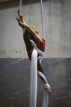 Les Arts de Cirque. I wish I was this flexible!!: