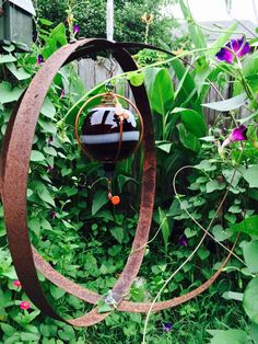 Hummingbird feeder inside old whiskey barrel metal rings.