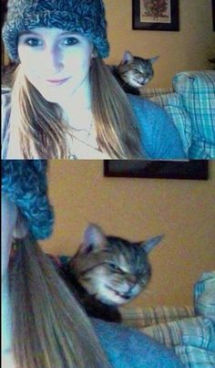 Funny pictures about Evil Cat Photobomb. Oh, and cool pics about Evil Cat Photobomb. Also, Evil Cat Photobomb photos. Funny Animal Memes, Funny Animal Pictures, Cat Memes, Funny Photos, Funny Animals, Cute Animals, Funny Memes, Memes Humor, Funniest Animals
