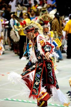2011 Gathering of Nations - I desire to see this magnificent gathering one day soon