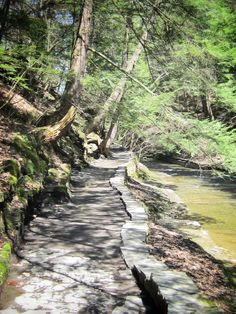 Gorge Trail at Buttermilk Falls National Park, Ithaca, New York.