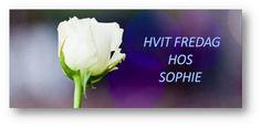 """HVIT FREDAG"" 24/11 Herbs, Food, Blogging, Meal, Essen, Herb, Hoods, Meals, Eten"
