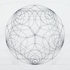 Galeria de Arquiteto mescla arte e ciência através de ilustrações que seguem a proporção áurea - 4