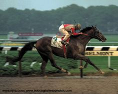 Julie Krone guides Colonial Affair to victory in the 1993 Belmont, becoming the first female rider to win a Triple Crown race.
