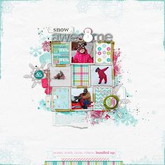 Jan113_Snowmobile06012013