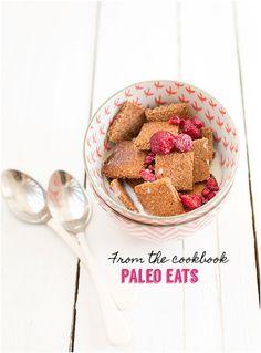 Paleo Coconut Cinnamon Cereal :: Gluten-Free, Grain-Free, Dairy-Free From Paleo Eats // deliciousobsessions.com // #grainfree #glutenfree #dairyfree #paleo