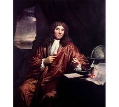 A painting produced c.1680 of Antonie van Leeuwenhoek. Van Leeuwenhoek was the first person to describe single-celled organisms, which he termed 'animalcules'. Considered by many to be the first microbiologist, van Leeuwenhoek is remembered for his advancements to the early development of the microscope.