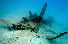 UnderwaterTimes.com | Helldiver Plane Found: Researchers Locate Another WWII Aircraft Missing In Palau For Over 70 Years | Soggy Science | Scoop.it