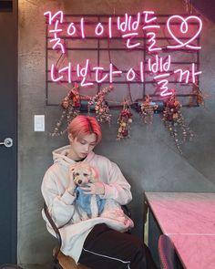 felix of stray kids. Felix Stray Kids, Fandom, Kid Memes, Kids Wallpaper, Tears Of Joy, Kpop, Lee Know, Lee Min Ho, Minho