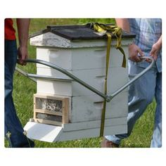 Hive Carrier