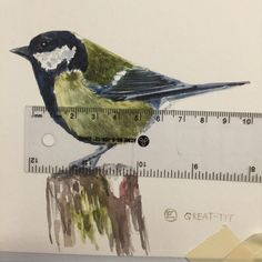 Hello Mr. Great Tit Oh, you don't have a home either? I'll tell All my friends...and maybe they would like to give you a home.                      Www.instagram.com/shopblueshineart #blueshineart #original #art