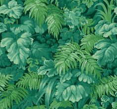 Royal Fernery by Cole & Son - Forest Green - Wallpaper : Wallpaper Direct Cole And Son Wallpaper, Green Wallpaper, Wallpaper Roll, Royal Wallpaper, Leaves Wallpaper, Office Wallpaper, Wallpaper Ideas, Cole Son, Wallpaper Online