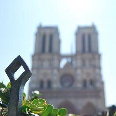 """@79jotaeme's photo: """"La belleza no esta siempre en el Primer Plano #NotreDame #Paris"""""""