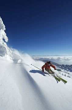 This photo really captures the speed and the thrill of alpine, or downhill skiing. The skier is demonstrating really good form with his edges cutting and how he's leaning into his turn in complete control. Alpine Skiing, Snow Skiing, Snowboards, Winter Fun, Winter Wonder, Winter Snow, Location Ski, Ski Freeride, Kayak