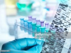 Stock Photo : Scientist holding DNA gel in front of samples for testing in laboratory