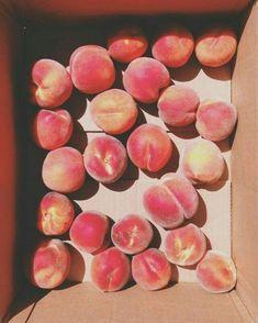 Peachy 🍑 - 1 oz white rum - 2 is peach schnapps - peach slush Peach Aesthetic, Just Peachy, C'est Bon, Peach Colors, Fruits And Veggies, Food Photography, Berries, Food Porn, Food And Drink