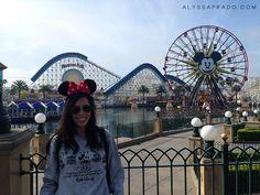 Los Angeles sem Carro - Disneyland Anaheim Califórnia #disneyland