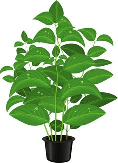 potted plant clip art potted plants clip art pinterest rh pinterest com planet clipart for kids planet clip art black and white
