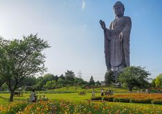 The Ushiku Great Buddha in Ibaraki, Japan, photographed on April The statue, completed in held the title of the world's tallest statue for nine years, and now holds the fourth-place slot. Branches Of Buddhism, Buddha Art, Mystery Of History, Heaven On Earth, Pilgrimage, Places To Go, Nature, Sculptures, Images
