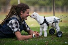 They Found A Crippled Lice-Infested Baby Goat. What Happened Next Is Absolutely Beautiful - Dose - Your Daily Dose of Amazing