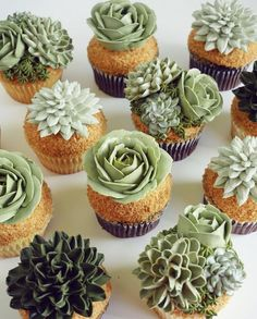 Succulent cupcakes/desserts for a deseret party Twix Cupcakes, Cupcake Cakes, Cupcakes Amor, Cupcake Piping, Cupcake Art, Cupcakes Succulents, Just Desserts, Dessert Recipes, Biscuits