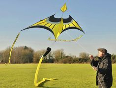 A very innovative and attractive Delta kite. The cut-away sail near the nose makes the sail look more like a bird's wing. The extended nose portion could be a stylized bird head. Beautiful design! T.P. (my-best-kite.com)