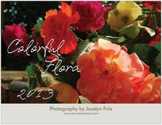 2013 wall calendar colorful flora  flower by NewCreatioNZ on Etsy, $29.00
