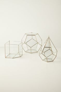 Terrarium Kit - anthropologie.com- man I really want some of these faceted terrariums for succulents!  (Okay not these specific anthro ones because they're SO expensive but something like it!)
