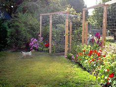 Tina's terrific trellis fence | Flea Market Gardening