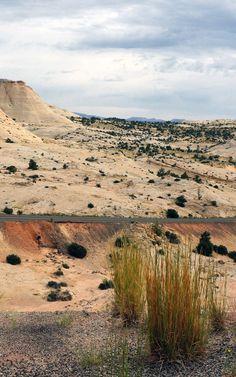 'All American Road': Utah's scenic byway  - highway 12; best to bike in spring or fall... www.utah.com/byways/highway_12.htm