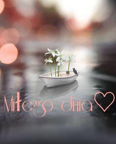 Wish, Good Morning