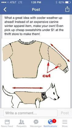 Create a doggy sweater
