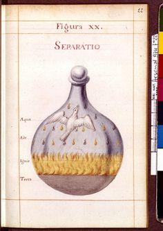 Figura XX - Separatio - Sapientia veterum philosophorum, sive doctrina eorumdem de summa et universali medicina 40 hierogliphis explicata