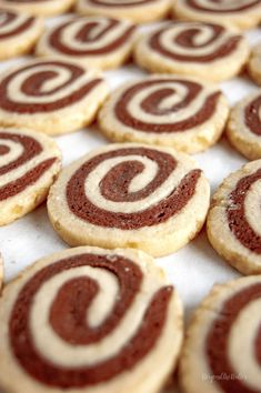 Chocolate pinwheel cookies are perfect to make over the holidays! You take chocolate cookie dough and roll it with some vanilla cookie dough. Roll the cookie dough log in some demerara sugar for a bit of sweet crunchiness on the outside! Quick Cookies, Roll Cookies, Yummy Cookies, Chip Cookies, Tea Cakes, Shortbread, Biscotti, Macarons, Cookie Recipes