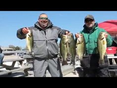 Bass Fishing tips and tactics for largemouth and Smallmouth bass fishing in lakes and rivers, sonar instruction, free baits and tackle and forums with live h...