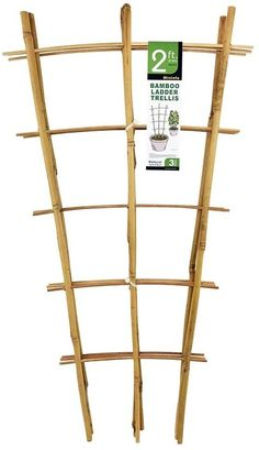 Mininfa Natural Bamboo Trellis 24 Inches Tall, Garden Ladder Trellis, Plant Trellis for Climbing Plants, Vegetables, Pots - 3 Pack#bamboo #climbing #garden #inches #ladder #mininfa #natural #plant #plants #pots #tall #trellis #vegetables Bamboo Trellis, Garden Trellis, Plant Trellis, Plant Ladder, Garden Ladder, Bamboo Ladders, Bamboo Poles, Bamboo In Pots
