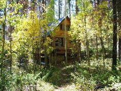 Grand Lake Cabin Rental: Classic Lake View Cabin 5 Acres Overlooking Shadow Mtn Lake | HomeAway