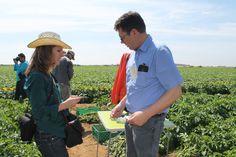 Entrevistando a un representante de las casas de semillas