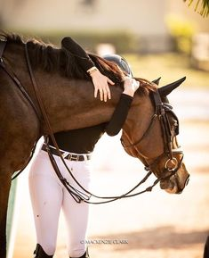 Equine photography - Art Of Equitation Cute Horses, Horse Love, Horse Girl, Beautiful Horses, Trail Riding Horses, Horse Riding Tips, Horse And Rider, Horse Show Mom, Show Horses