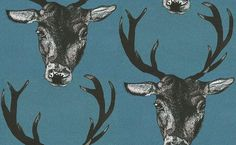 Stag Head Teal (26218) - Graduate Collection Wallpapers - A stunning, bold, hand drawn black Stag panel design from Lisa Bliss on a rich, deep Teal coloured background.  Small scale also available. Paste the wall product. Please request sample for true colour match.